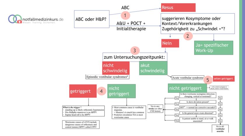 Schwindel Workflow.png